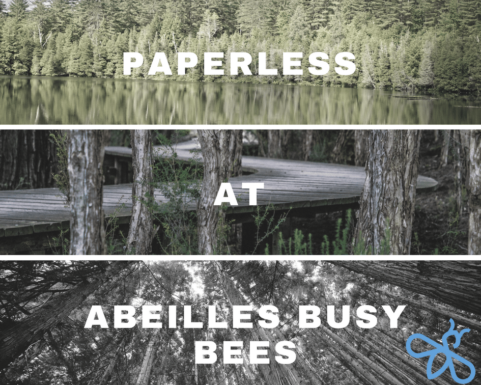 Image Paperless program at Abeilles Busy Bees