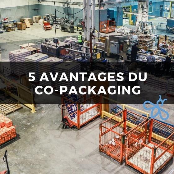 Image 5 Avantages du Co-Packaging